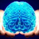 Perché la Mindfulness è così speciale?
